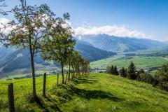 Über Wiesen hinab ins Pinzgau